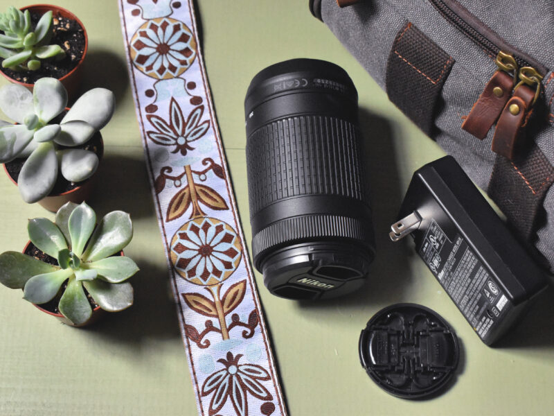 How to choose the perfect camera for blogging