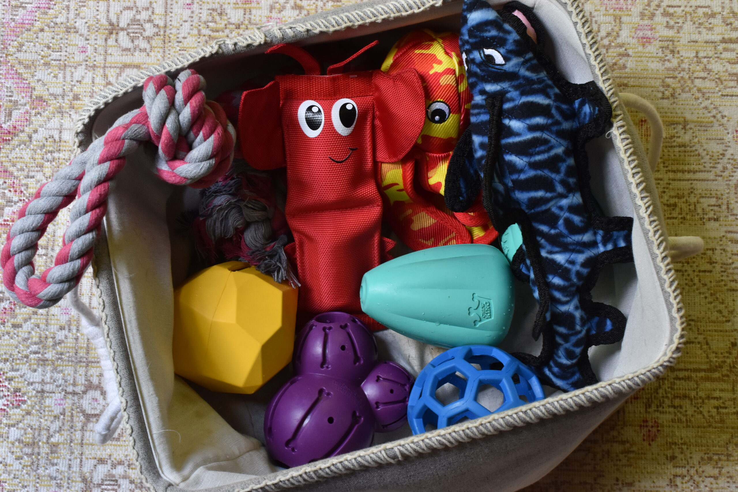 Best dog toys for super chewers (Chaucer's picks)